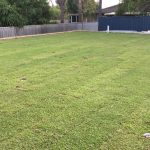 Mulligan Landscaping Renovation During